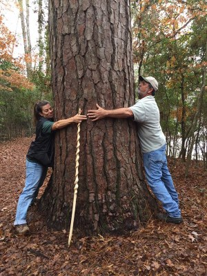 Two adults hugging a large pine tree.