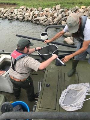 TPWD taking fish samples