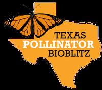 Texas Pollinator BioBlitz logo