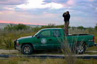 Game warden standing in bed of truck looking through binoculars