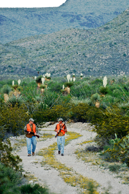 Hunters in orange at Black Gap