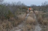 hunter orange seen from across a field