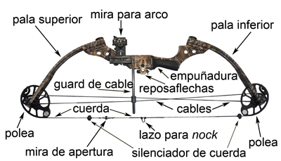 diagram of a compound bow