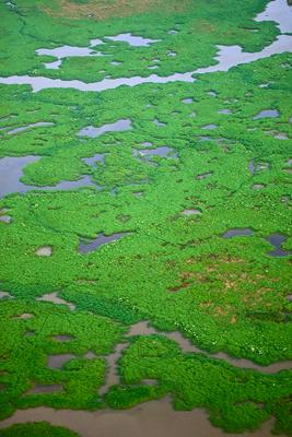 Texas Ecoregions — Texas Parks & Wildlife Department