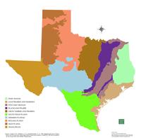 Eco Regions Map