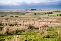Rolling Plains landscape