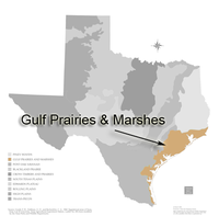 Map of Gulf prairies and marshes