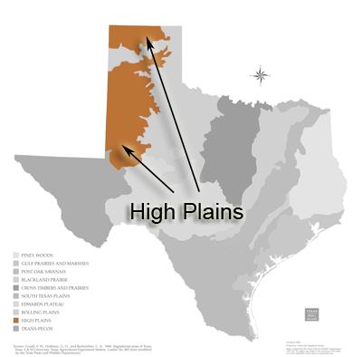 Texas Ecoregions — Texas Parks & Wildlife Department on midwest economy, northeastern united states economy, southwest economy, haiti economy, greenland economy, alaska economy, international economy, plains indians economy, ford economy, north central plains texas economy, great lakes economy,