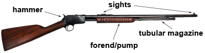 Labeled image of pump action rifle