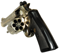 image of Double Action Revolver cylynder opened to the side.