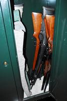 Guns in Safe