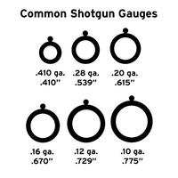 Common Shotgun Gauges
