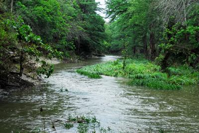 rain-filled creek