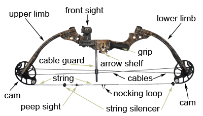 diagram of compound bow