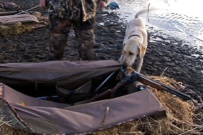 hunting dog with hunter and guns