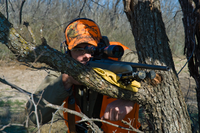 Shooter using tree rest