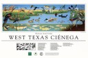 West Texas Cienega Poster