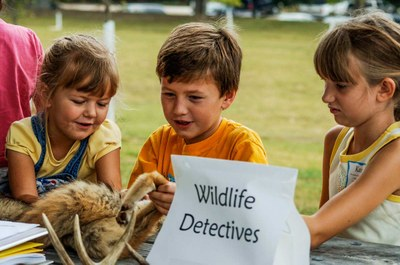 "Three young kids looking at a fur with a sign in front that says ""Wildlife Detectives."""