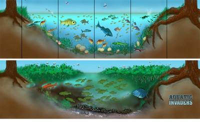 Aquatic Invaders - Sea Grant