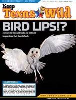 cover_birdlips.jpg