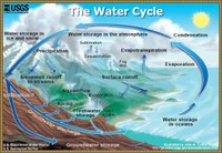 Water Cycle Summary