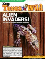 Cover-Alien Invaders