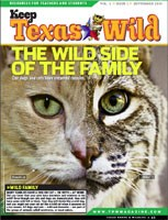 Cover-Wild Side