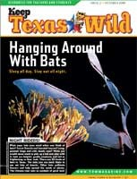 Cover-Hanging Around with Bats