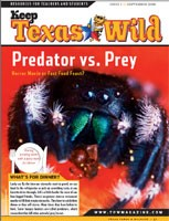 Cover-Predators