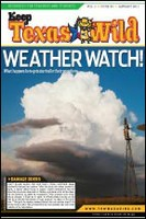 Cover_Weather_Watch