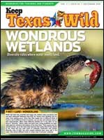 Cover-Wondrous Wetlands