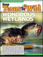 Cover-Wondrous Wetlands