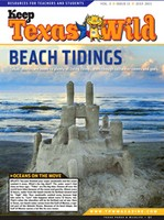 Cover-Beach Tidings