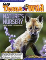 Cover-nature's nursery