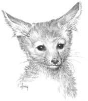 fox_200.jpg