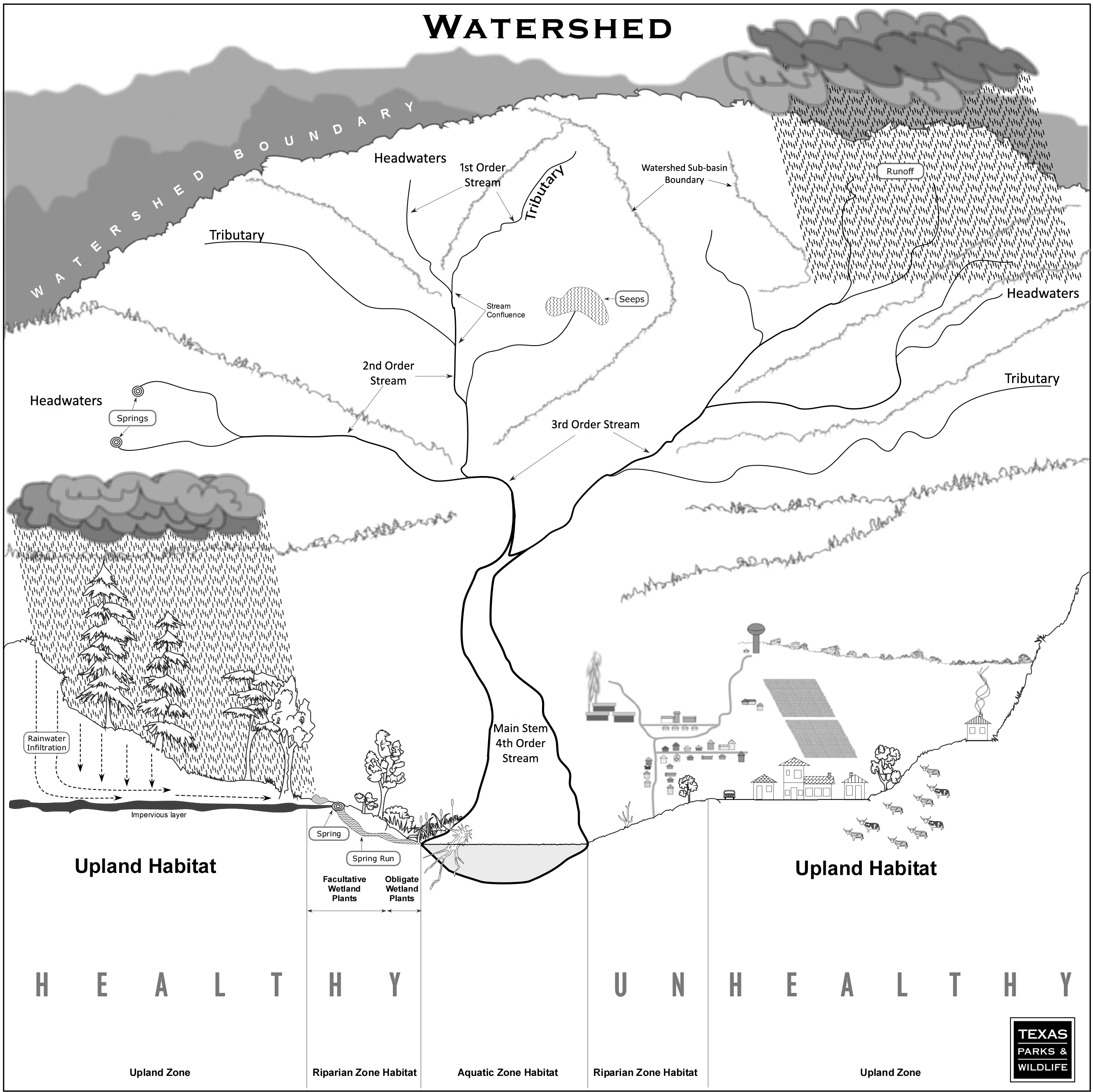 Anatomy of a River - Watershed