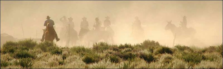 Deep Springs Cattle Drive