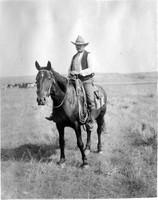 Horse Cowboy B&W