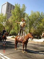 Vaquero Lasso