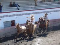 Vaquero Skills