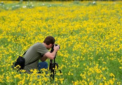 WildflowerPhotography