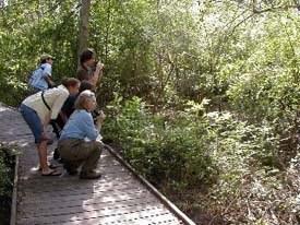 Birding team spotting