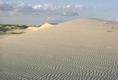 Monahans Sandhills State Park (photo TPWD)