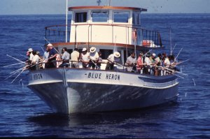 Tpwd short report creel surveys for Galveston fishing party boats