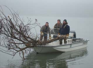 Management crew carrying cut tree in boat