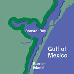 Overview gulf