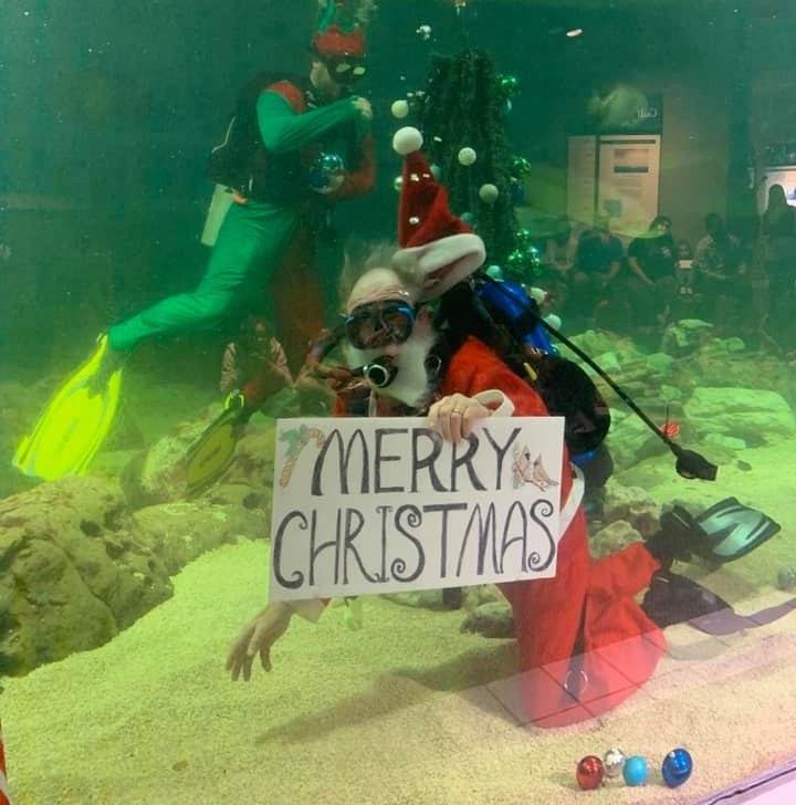 Santa Claus scuba diving