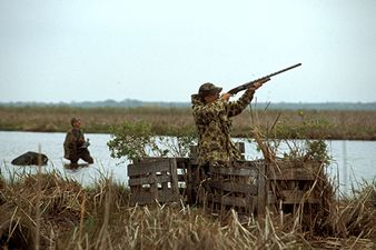 Duck hunting in the Guadalupe Delta Wildlife Management Area