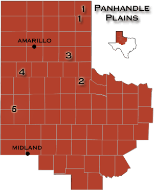 Panhandle Plains