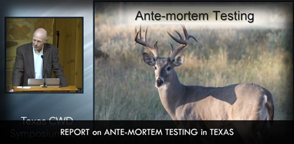 Report on Ante-Mortem Testing in Texas